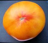 Семена томатов. 330 сортов.